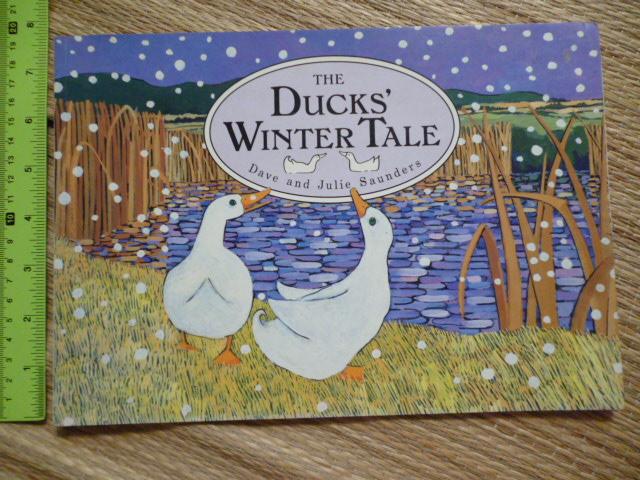 The Ducks' Winter Tale (Paperback)