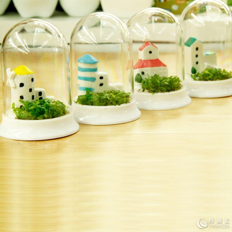 ชุดปลุกต้นไม้ Mini World