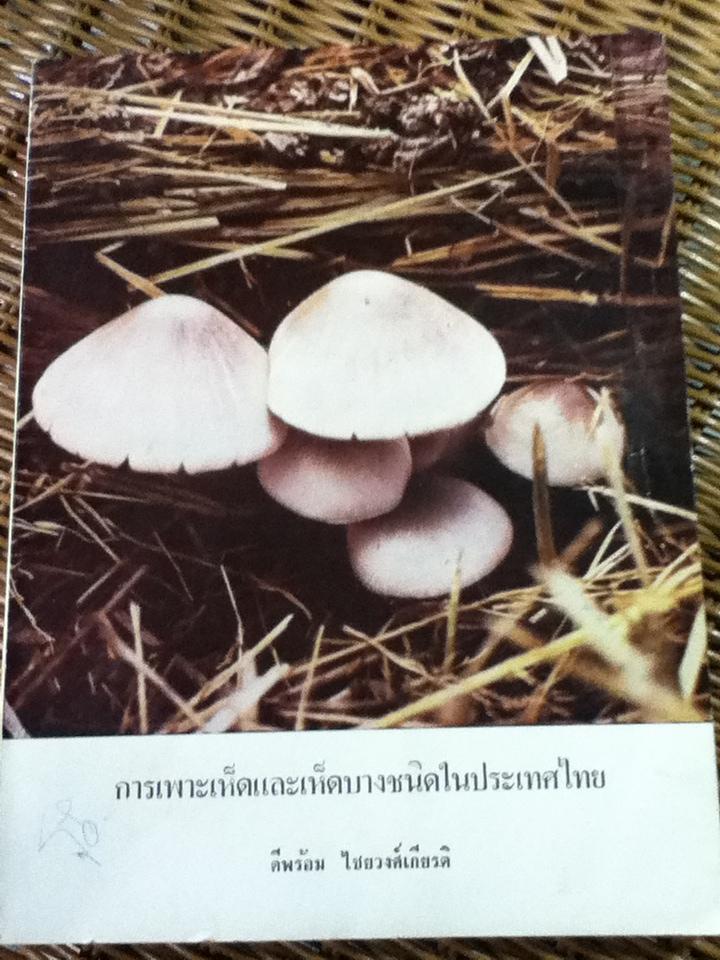 การเพาะเห็ดและเห็ดบางชนิดในประเทศไทย