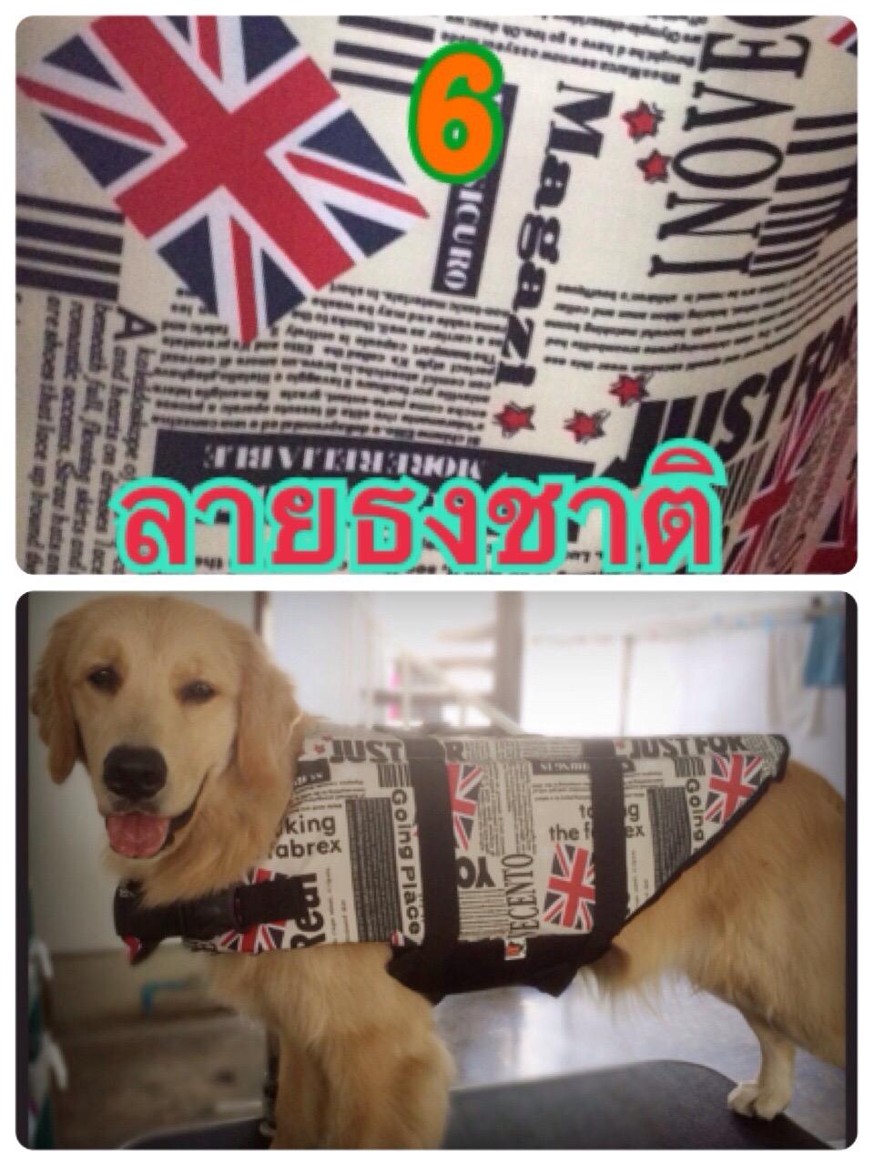 เสื้อชูชีพสุนัข