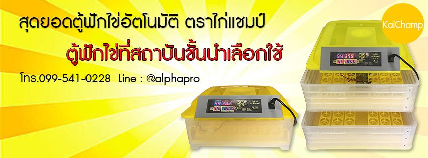 ตู้ฟักไข่ ตราไก่แชมป์ (099-541-0228)