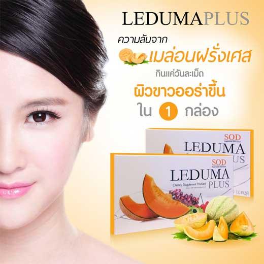 LEDUMA PLUS เลอดูมา พลัส เป็นแบบ SOD