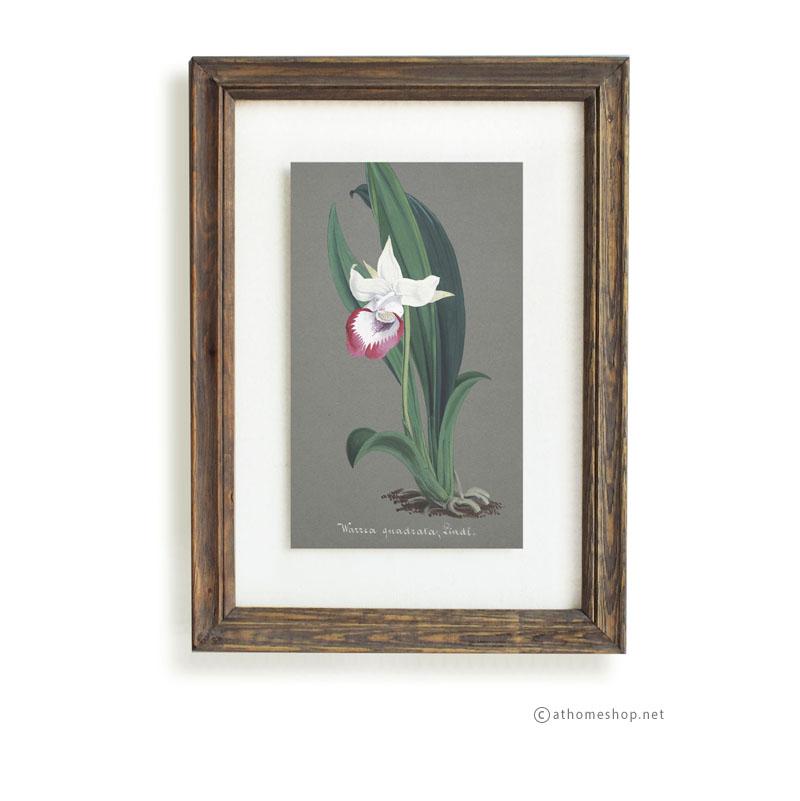 วอลล์อารต์ลายดอกไม้ กรอบบัวไม้สีเข้มกระจกคู่