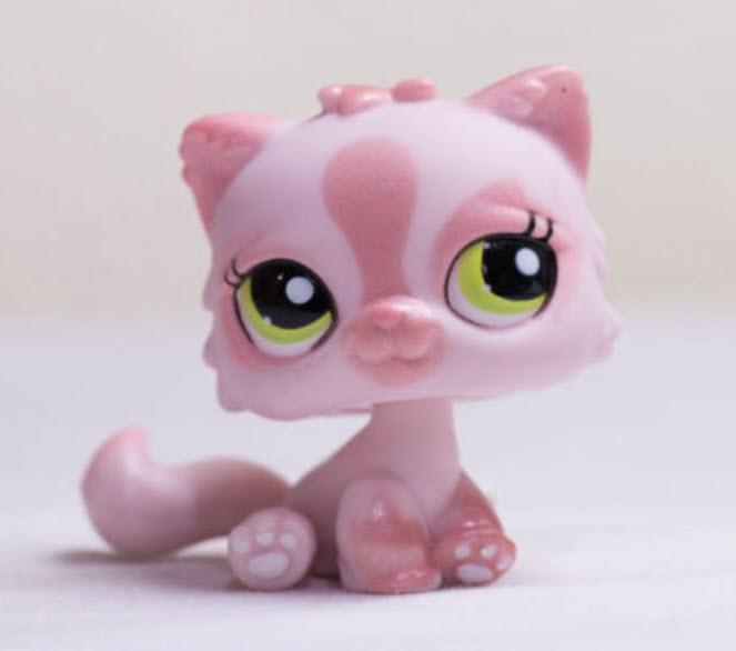 แมวเปอเซีย สีชมพู #1083