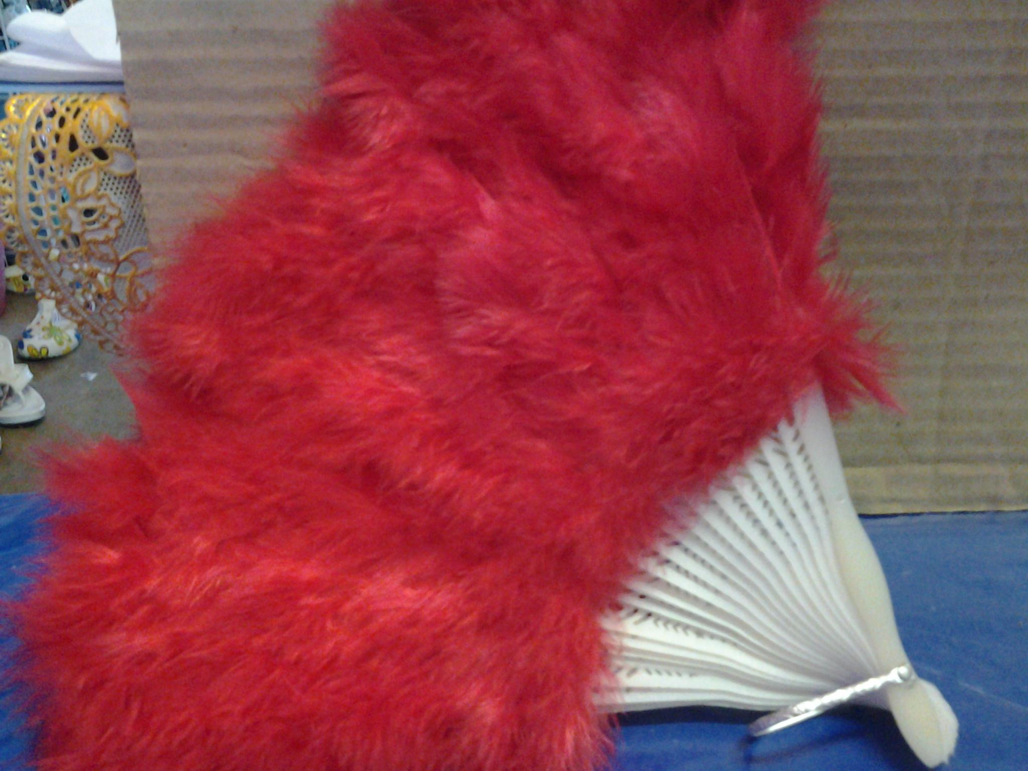 พัดขนนกสีแดง